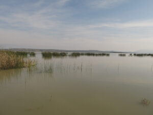 Laguna Cuitzeo, Michoacan,