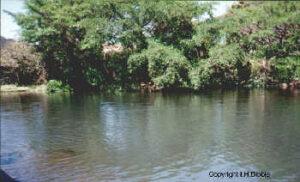 Rio Teuchitlan,