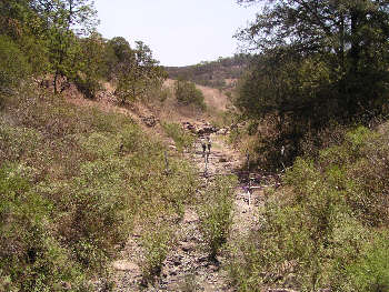 rroyo Diabolos, Jalisco. Photo by Ivan Dibble 2000