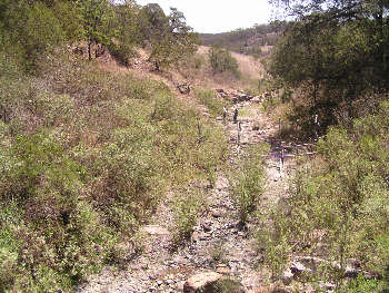Arroyo Diabolos, Jalisco. Photo by Ivan Dibble 2000