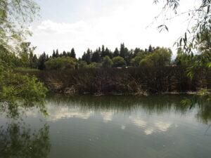Lago Zacapu,