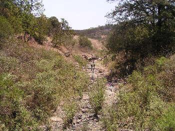 rroyo Diabolos, Jalisco. Photo by Ivan Dibble 2000