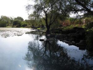 La Minzita. Photo E Radax