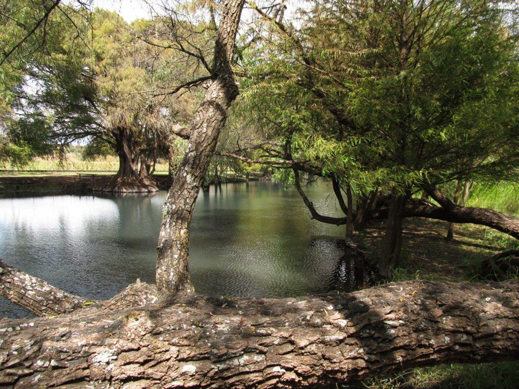 Lago de Camécuaro, Photo By E. Radax